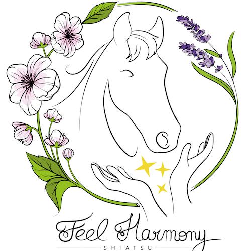 Feel harmony cheval